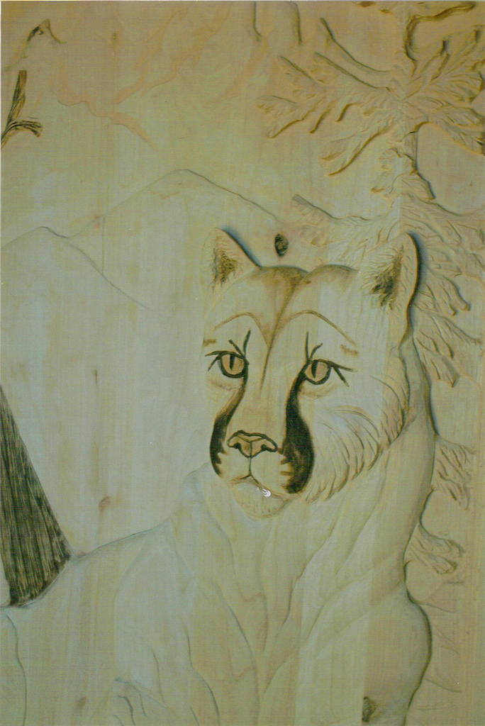 Wall Art- Mountain Lion