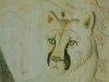 Wall Art- Mountain Lion